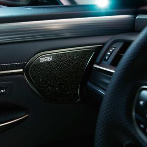 Lexus ES 300h detale